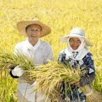ICTで日本の稲作を守れ!金沢工大の学生論文が国際会議で採択