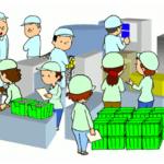 『改善ぷちセミナー』標準化の4つのC