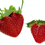 農業はアイデア農業商品で変えられる