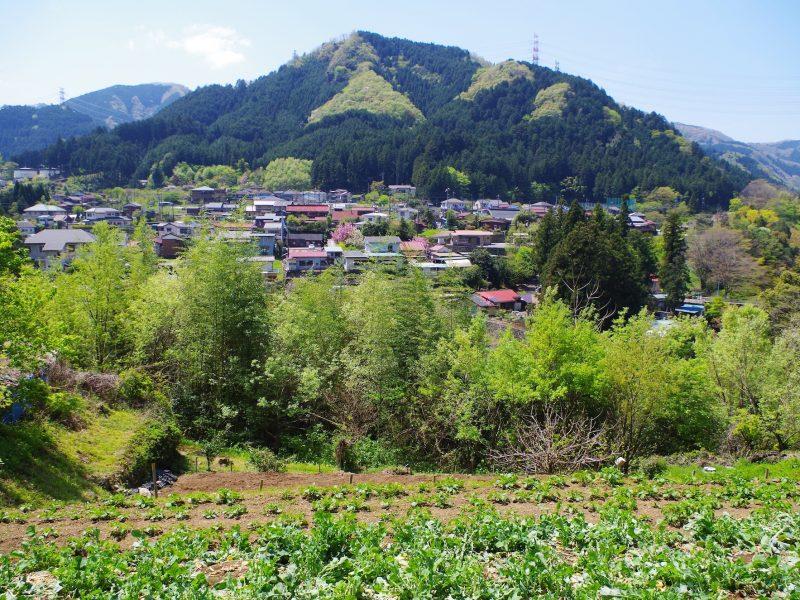 檜原村の風景