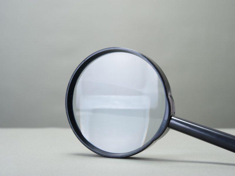 大きい虫眼鏡